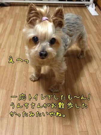 20130514_3.JPG