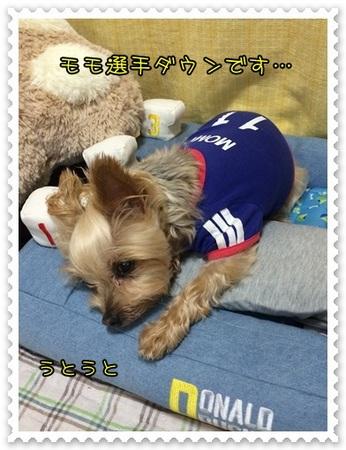 20140615_7.JPG