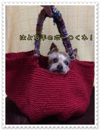 20140623_5.JPG
