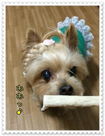 20140708_5.JPG
