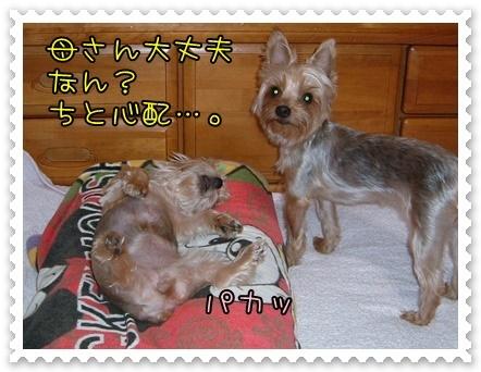20141021_02.JPG
