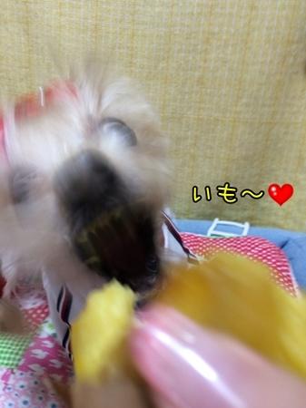 20151015_2.JPG